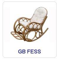 GB FESS